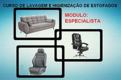 Curso de Lavagem e Higienização de Estofados - Modulo: Especialista