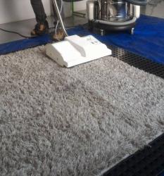 Curso de Lavagem e Higienização em Tapetes, Carpetes.
