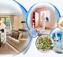 Curso de Sanitização e Oxi-sanitização em Ambientes e Estofados (Curso Online e com Aulas Ao Vivo)